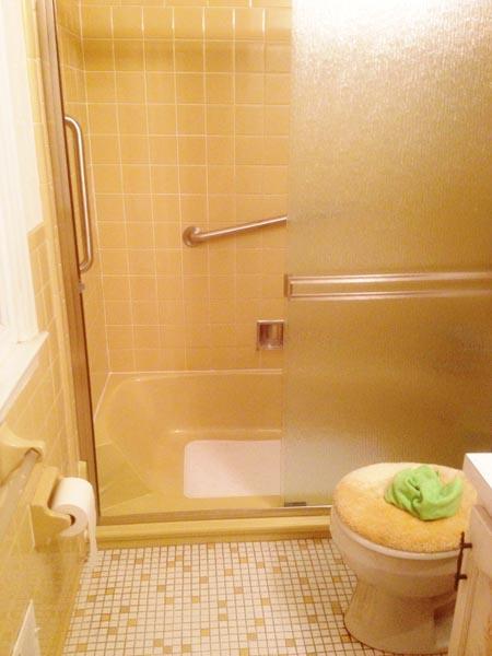 E Z Step Tub To Shower Conversion Senior Safetypro